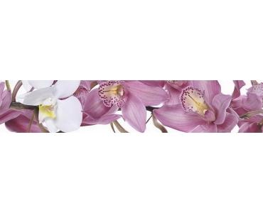 Фартук - белая орхидея на фоне сиреневых орхидей