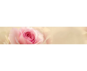 Фартук - бутон розовой розы на размытом фоне